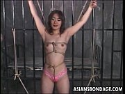asian sluit roughed up in a bdsm session.