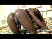 Ebony tranny Nikki rubbing her large dick in bed