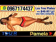 tour chonguero quito. modelo pamela night club quito..