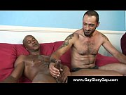 Gay handjobs - Gay white boys jerking off black dudes 28