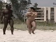 Interracial Public (Nude Beach)