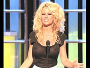 Pamela Anderson Busty In A See-Thru Top