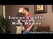 gay xxx lucas vitello may be only 18,.