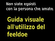 0-2 Guida all&#039_uso del feeldoe