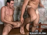 three hot studs have wild group sex with.