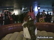 special-assignment-87-lingerie-bull-riding-scene 1, ox or bull Video Screenshot Preview