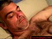 Hairy bears together suck dick aplenty