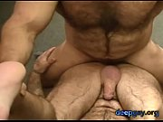 two very hairy bear daddies waste no time (deepgay.org)