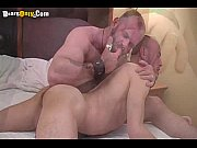 hot daddy bears make love