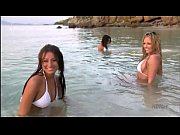 Celeb Ashley Boehm and girlfriends in bikini