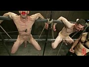 Sexy gay males bound bondage sex