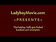 Ladyboy Aoffy Bareback and Creampie