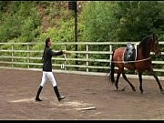 harmony - young harlots riding school - scene 6