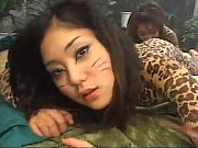Animal Paint view on xvideos.com tube online.