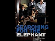 m-searching for the elephant [2009] han.