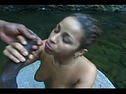 latin honey hazel&#039_s river dance -
