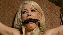 Slave Girl collected, trained, tormented for auction.