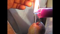 Urethra in hot purple wax Thumbnail
