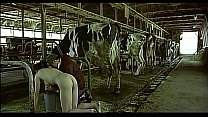 Asian woman pretending to be a cow milked him a...