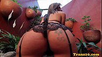 Twerking latina ts toying her ass in stocking