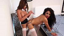 Shemales in lingerie banging hard