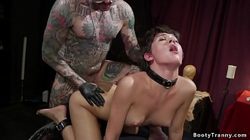 Hot brunette shemale Daisy Taylor is a willing sub to her new alt master and he manhandles her and anal fucks in different bondage positions