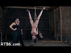 Upside down honey gets her nipples clipped during hardore sex