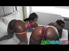 Biggest Ass's in amateur porn - coozhound.com