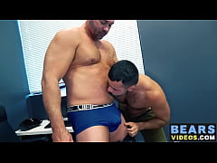 Hairy bear Teddy Torres breeds cock hungry Tyler Reed