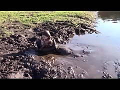 Mud Lovers Leila Hazlett Trailer