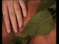 nettle punishment