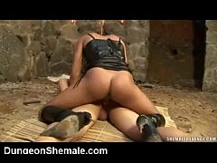 Shemale Dommes!