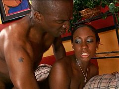 Ebony to ebony black cock plowing