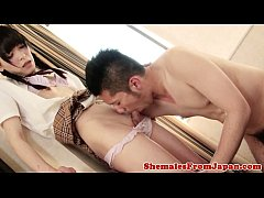 Amateur ladyboy doggystyled after getting bj
