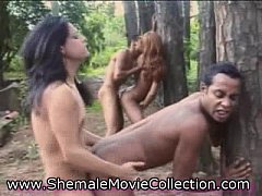 Outdoor Shemale Orgy!