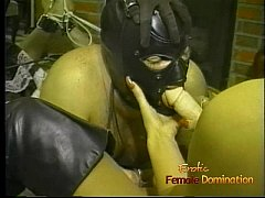 Two hot fillies make a hung stallion suck on a long dildo