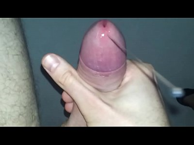 Porn galleries Men shaved pubic hairs