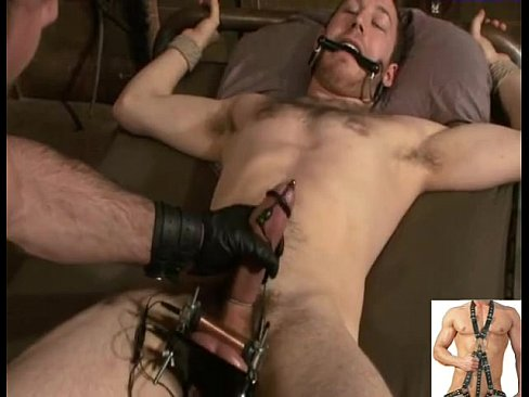 from Phoenix gay men bondage images
