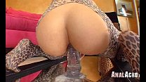 Anal Acrobats 238 Preview