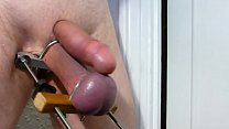 Cock & Stretched Balls Tormented