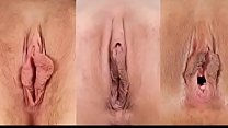 What Kind Of Pussy Do You Prefer? صورة