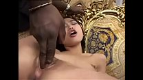 White pussy for a black cock Vol. 11