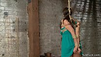 Busty sub gets pussy tormented on hogtie