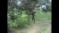 Hot Nasty Raw Hard African Jungle Fucking!! pornhub video