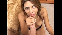 Sophia Castello Swallows preview image
