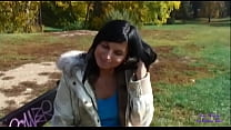 The brunette with the fur accepts some money to fuck in the public park and swallow my cum