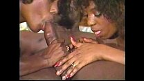 Ebony Humpers 3 1993 preview image