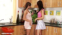 Two hot brunettes have anal fun with didlo on S...