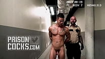 PRISON COCKS - Collection Of Security Footage Showing Inmates And Prison Guards Misbehaving