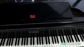 Piano babe takes it in a doggy style